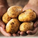 Chăm sóc da cùng mặt nạ khoai tây