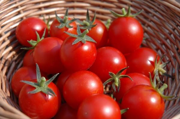 Mat na ca chua cho lan da nhon thoat khoi mun trong ngay nong