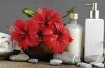 Bí quyết chăm sóc tóc đẹp bằng hoa dâm bụt