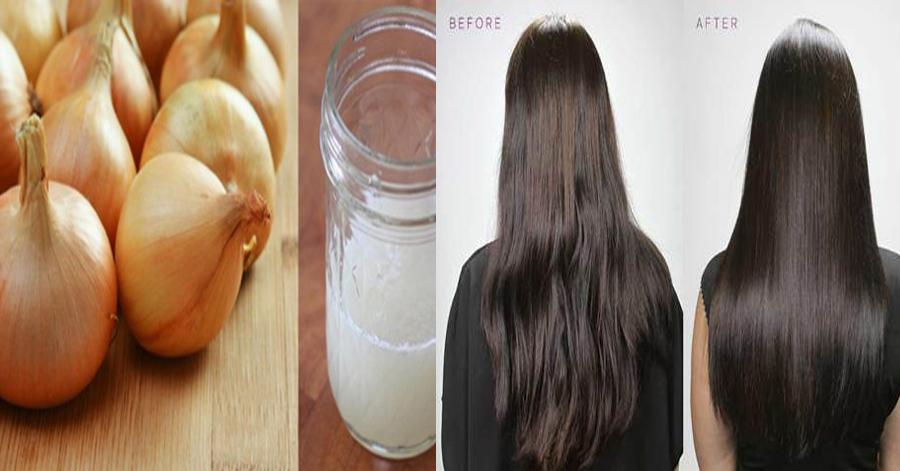 Xay nhuyễn thứ này lấy nước rồi gội đầu, tóc rụng cả nắm, gàu dày từng mảng cũng trị dứt điểm trong lần đầu