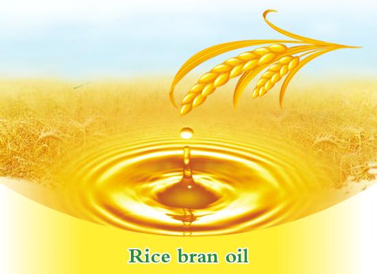 Dầu cám gạo – Xu hướng dưỡng da và chống nắng an toàn giúp da mượt mà, láng mịn, chậm lão hóa