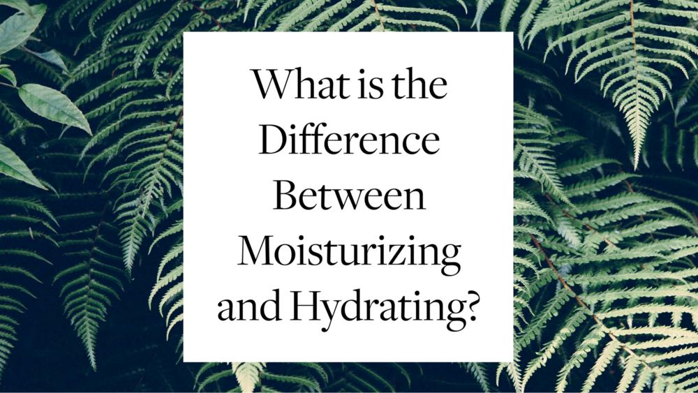 Dưỡng ẩm (Hydrate) và giữ ẩm (Moisture) khác nhau thế nào?