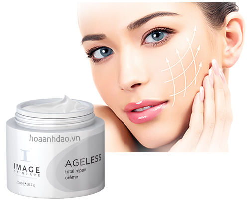Image Skincare Ageless Total Repair Cream Lajoshrichcom