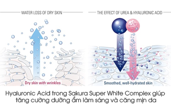 hon-hop-duong-trang-chong-lao-hoa-sakura-super-white-complex-excellent-skin-lightening
