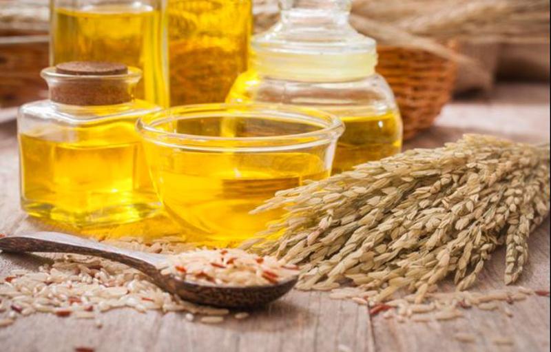 Chiết xuất cám gạo Oryza Sativa bổ sung nhiều lợi khuẩn