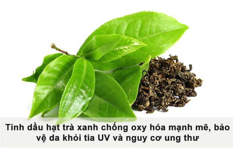 tinh dầu hạt trà xanh chống oxy hóa cho da